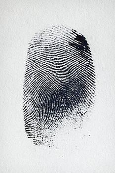 Finger Print by Igor Kozeev