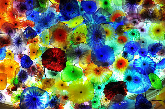 Fiori di Como by glass sculptor by Gandz Photography