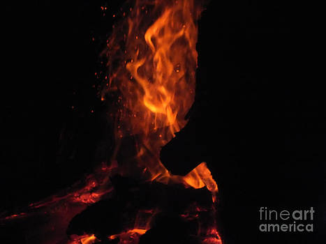 Fire 3 by Melissa Lightner