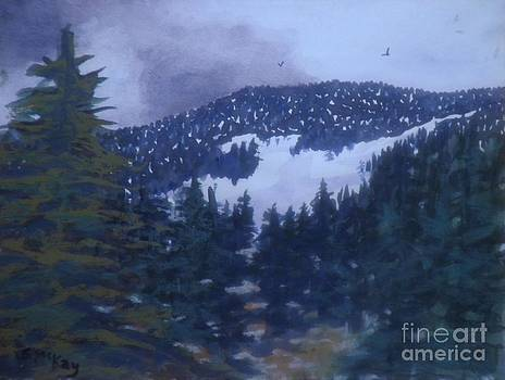 Fire Burn In Winter by Suzanne McKay