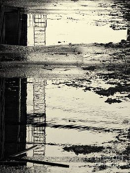 Fire Escape Reflected by Mark Thomas