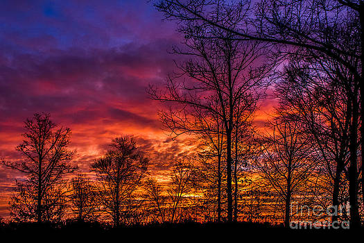 Fire In The Sky by Debra K Roberts