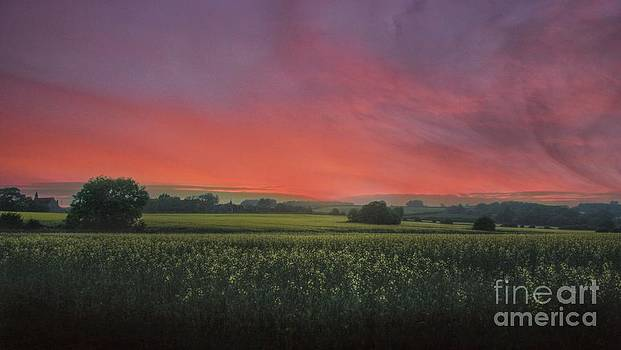 Fire in the sky by Lee-Anne Rafferty-Evans