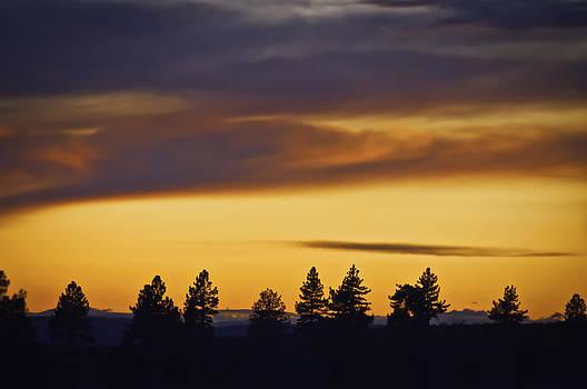 Fire In The Sky by Sherri Meyer