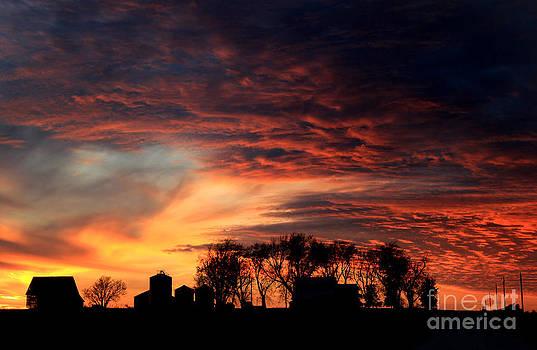Glorious Sky by Thomas Danilovich
