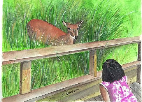 Fire Island Deer by Sheryl Heatherly Hawkins