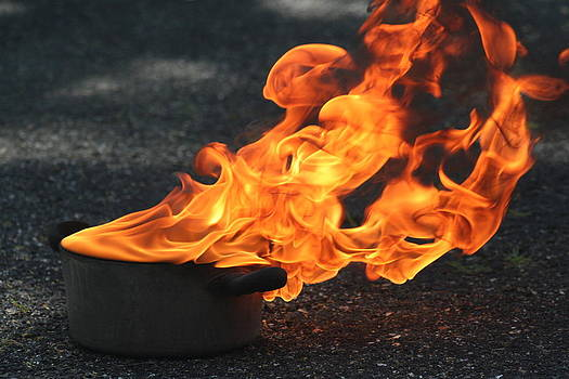 Jennifer Lamanca Kaufman - Fire