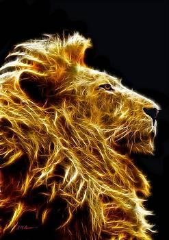 Fire Lion by Michael Durst