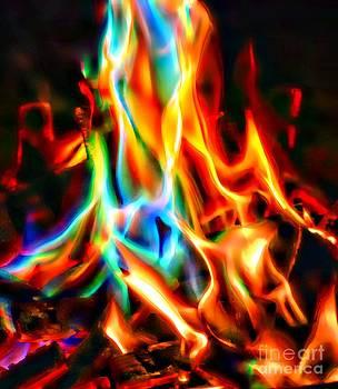 Fire Magic by Gail Bridger