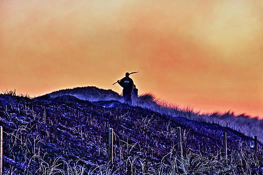 Fire on the dunes by Tony Reddington