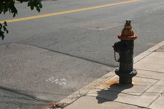Fire Plug by David S Reynolds