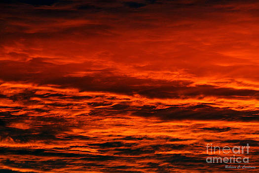 Fire Reds Sunset by Rebecca Christine Cardenas