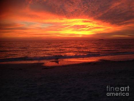 Fire Sky by Anita Wexler