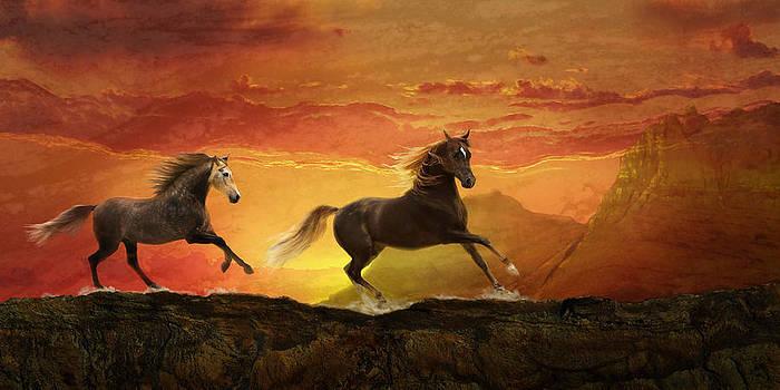 Fire Sky by Melinda Hughes-Berland