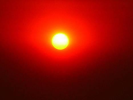 Fire Sun by Julia Ivanovna Willhite