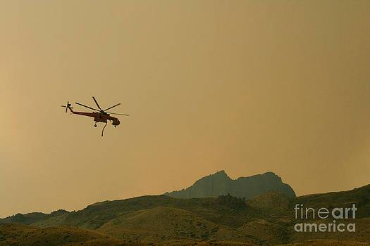 Firefighting Helicopter by Denise Lilly