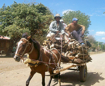 Kelvin - Firewood Cart