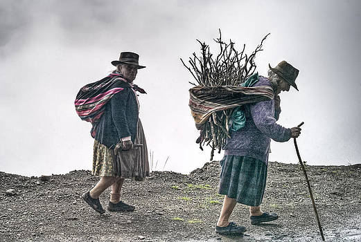 Firewood Gatherers by Tina Manley