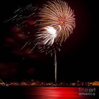 Svetlana Sewell - Firework 01
