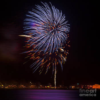 Svetlana Sewell - Firework 02