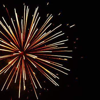 Firework Burst by Ami Clayton
