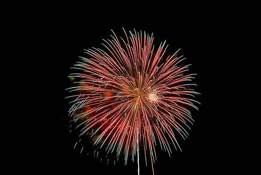 Devinder Sangha - Firework
