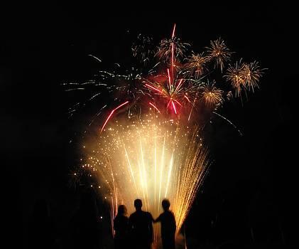 Shane Brumfield - Firework Silhouette