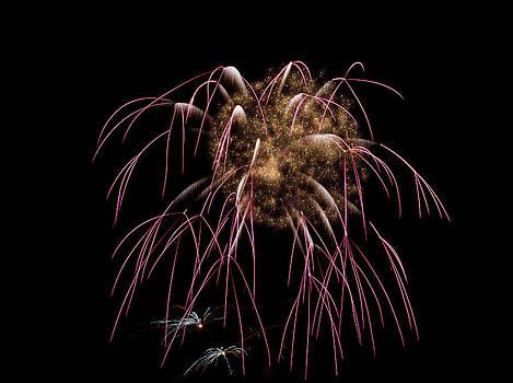Fireworks 01  by David Kittrell