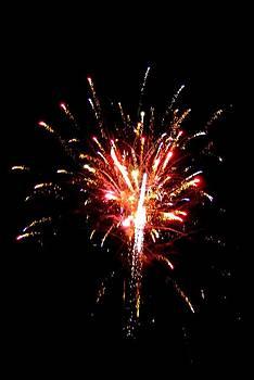 Fireworks 10 by Mark Malitz