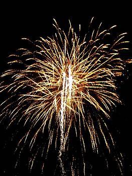 Fireworks 3 by Mark Malitz