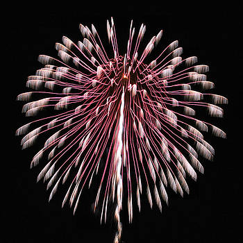 Fireworks 4 by Acadia Photography