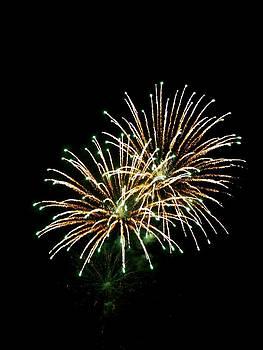 Fireworks 8 by Mark Malitz