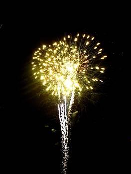 Fireworks 9 by Mark Malitz