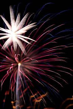 Fireworks by David Dufresne