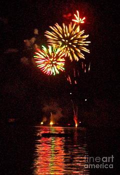 Fireworks by Linda Zolten Wood