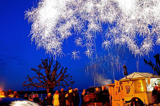 Fireworks shower by Eliot Freed