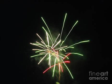 Fireworks Twenty Eleven IX by Daniel Henning