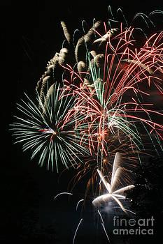 Gary Gingrich Galleries - Fireworks6490