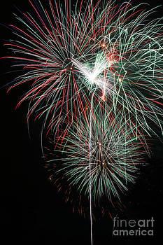 Gary Gingrich Galleries - Fireworks6497