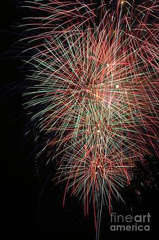 Gary Gingrich Galleries - Fireworks6500