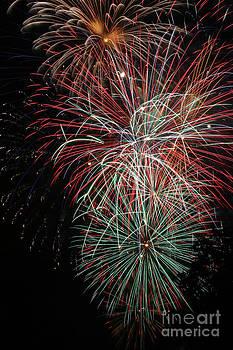Gary Gingrich Galleries - Fireworks6506