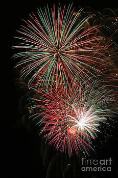 Gary Gingrich Galleries - Fireworks6509