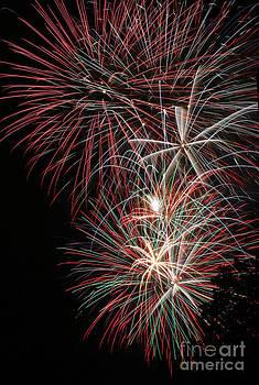 Gary Gingrich Galleries - Fireworks6518