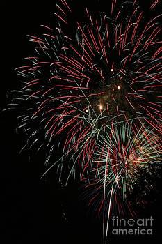 Gary Gingrich Galleries - Fireworks6524