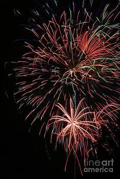 Gary Gingrich Galleries - Fireworks6525
