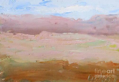 Fred Wilson - First Mesa