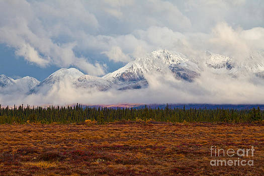 First Snow by Chris Heitstuman