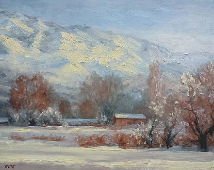 First Snow by Lynn T Bright