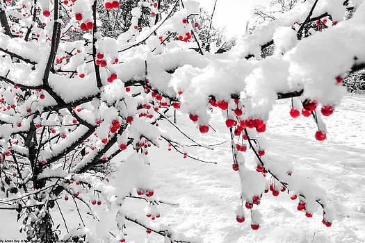 First Snow by Michelle and John Ressler