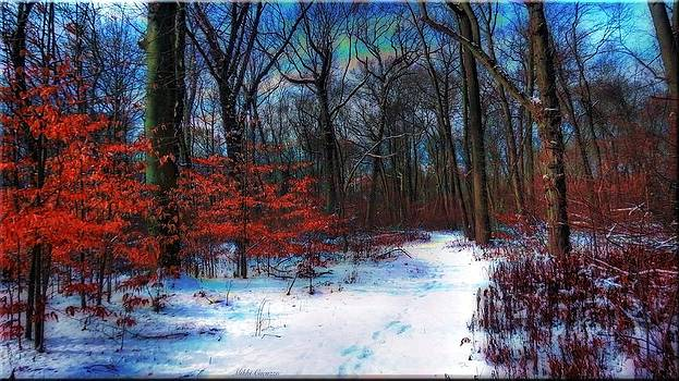 First Snow by Mikki Cucuzzo